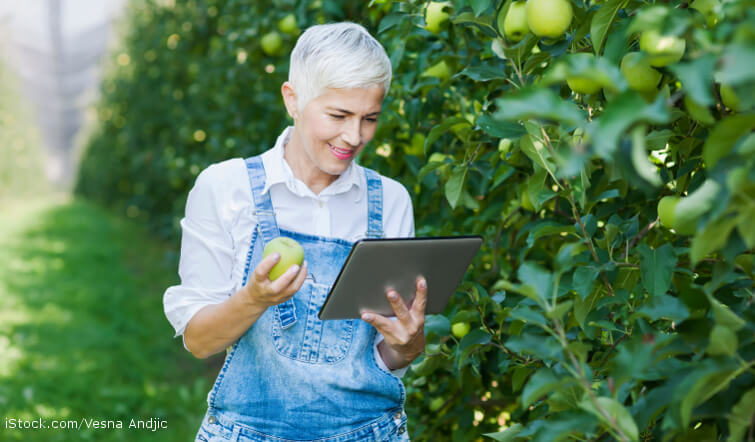 Woman standing in a field looking at her tablet computer.